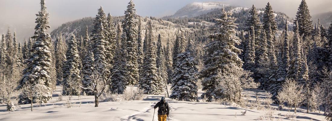 randonnée hiver rhone alpes