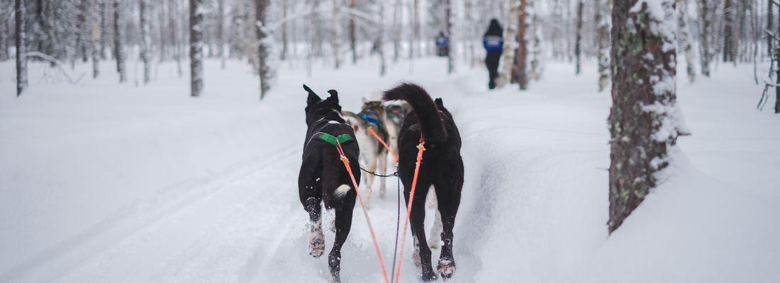 activité hiver rhone alpes